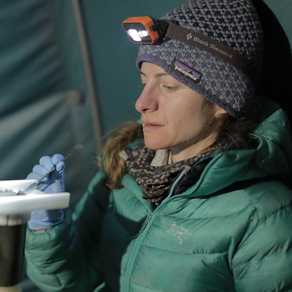 Highlands hunt for climate answers